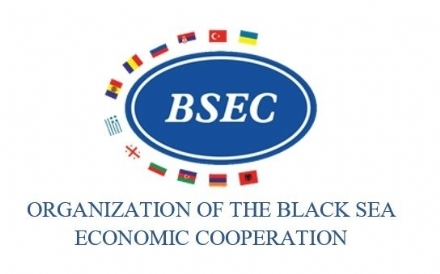 Participation of the PABSEC International Secretariat in the Meeting of the BSEC Working Group on Energy, 10 December 2020